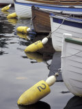 Mooring Buoys at the Center for Wooden Boats, Seattle, Washington, USA Photographic Print by John & Lisa Merrill