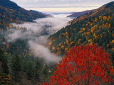 Autumn View of Fog from Morton Overlook, Great Smoky Mountains National Park, Tennessee, USA Photographic Print by Adam Jones