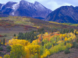 Colorful Aspens in Logan Canyon, Utah, USA Photographic Print by Julie Eggers