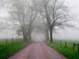Sparks Lane on Foggy Morning, Cades Cove, Great Smoky Mountains National Park, Tennessee, USA Photographic Print by Adam Jones