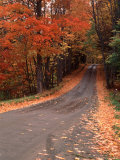 Charles Sleicher - Country Road in Autumn, Vermont, USA Fotografická reprodukce