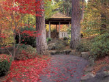 Japanese Gazebo with Fall Colors, Spokane, Washington, USA Photographic Print by Jamie & Judy Wild