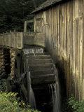 Grist mill, Cades Cove, Great Smoky Mountains National Park, Tennessee, USA Fotografisk trykk av Adam Jones