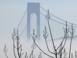 Verrazano-Narrows Bridge in Morning Fog, Staten Island, New York, USA Photographic Print by Walter Bibikow
