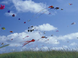 Kites Flying Along the Coastline, International Kite Festival, Long Beach, Washington, USA Photographic Print by John & Lisa Merrill