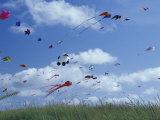 Kites Flying Along the Coastline, International Kite Festival, Long Beach, Washington, USA Photographic Print by John & Lisa Merrill