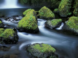 Water Below Wahclella Falls, Columbia River Gorge National Scenic Area, Oregon, USA Photographic Print by Adam Jones