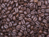 Coffee Beans, Washington, USA Photographic Print by Jamie & Judy Wild