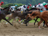 Race Horses in Action, Saratoga Springs, New York, USA Photographic Print by Lisa S. Engelbrecht