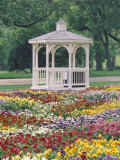 Patchwork of Pansies and Gazebo, Columbus, Ohio, USA Photographic Print by Adam Jones