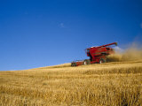 Combines Harvesting Crop, Palouse, Washington, USA Photographic Print by Terry Eggers