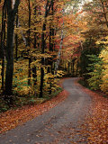 Country Road, Vermont, USA Photographic Print by Charles Sleicher