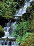 Japanese Garden, Portland, Oregon, USA Fotografie-Druck von Adam Jones