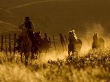 Ranch Living at The Ponderosa Ranch, Seneca, Oregon, USA Fotografisk trykk av Joe Restuccia III
