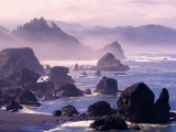 Morning Mist along Oregon Coast near Nesika, Oregon, USA Photographic Print by Adam Jones