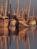 Shrimp Boats Tied to Dock, Darien, Georgia, USA Photographie par Joanne Wells