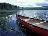 Canoeing on Lake Tarleton, White Mountain National Forest, New Hampshire, USA Fotografie-Druck von Jerry & Marcy Monkman