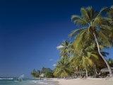 Kings Beach, Barbados, Caribbean Islands Photographic Print