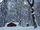 Log Cabin in Snowy Woods, Chippewa County, Michigan, USA Photographic Print by Claudia Adams