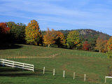 Horse Farm in New England, New Hampshire, USA Photographic Print by Jerry & Marcy Monkman