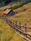 Barn on Last Dollar Road near Telluride, Colorado, USA Fotografisk tryk af Julie Eggers