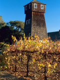Water Tank Tower at the Handley Cellars Winery, Mendocino County, California, USA Photographic Print by John Alves