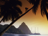 The Piton, Soufriere, St. Lucia Photographic Print