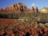 Red Rock Country, Sedona, Arizona, USA Photographic Print by Jamie &amp; Judy Wild