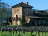 V Sattui Winery and Vineyard in St. Helena, Napa Valley Wine Country, California, USA Photographic Print by John Alves