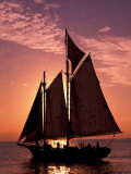 Sailboat at Sunset, Key West's Old Town Harbour, Florida Keys, Florida, USA Photographic Print by Greg Johnston