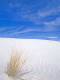 White Sands, New Mexico, USA Photographic Print by Rob Tilley