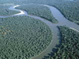 Amazon River, Amazon Jungle, Brazil Photographic Print