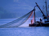 Commercial Fishing Trawler, Frederick Arm, Inside Passage, Southeast Alaska, USA Photographic Print by Stuart Westmoreland