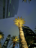 Downtown Los Angeles, Civic Center Area, California, USA Photographic Print by Stuart Westmoreland