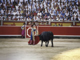Bullfight, Pamplona, Spain Lámina fotográfica