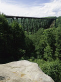 Kinzua Bridge State Park, Pennsylvania, USA Photographic Print