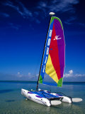 Catamarans, Florida Keys, Florida, USA Photographic Print by Terry Eggers