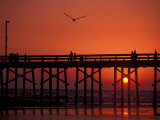 Newport Beach Pier, California, USA Photographic Print by Nik Wheeler