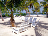 Palm Trees and Beach Chairs, Florida Keys, Florida, USA Stampa fotografica di Terry Eggers