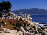 17-Mile Drive, Pescadero Point, Carmel, California, USA Photographic Print by Nik Wheeler
