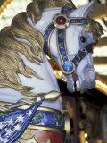 Horse on Carousel in Caras Park, Missoula, Montana, USA Photographic Print by John & Lisa Merrill