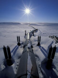 Trans-Alaska Pipeline From Prudhoe Bay to Valdez, Brooks Range, Alaska, USA Photographic Print by Hugh Rose