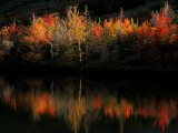 Fall Foliage with Reflections, New Hampshire, USA Photographic Print by Joanne Wells