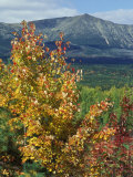 Mt. Katahdin, Appalachian Trail, Maine, USA Photographic Print by Jerry & Marcy Monkman