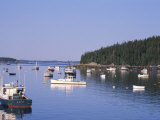 Lobster Boats in Stonington Harbor, Maine, USA Photographic Print by Jerry & Marcy Monkman