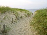 Chemin sur la plage Head of the Meadow Beach, Cape Cod National Seashore, Massachusetts, Etats-Unis Photographie par Jerry &amp; Marcy Monkman