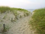 Chemin sur la plage Head of the Meadow Beach, Cape Cod National Seashore, Massachusetts, Etats-Unis Photographie par Jerry & Marcy Monkman