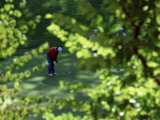 Golfers As Seen Through the Trees Photographic Print