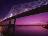Dames Point Bridge, Jacksonville, Florida, USA Photographic Print