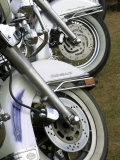 Harley Davidson Motorcycles Photographic Print